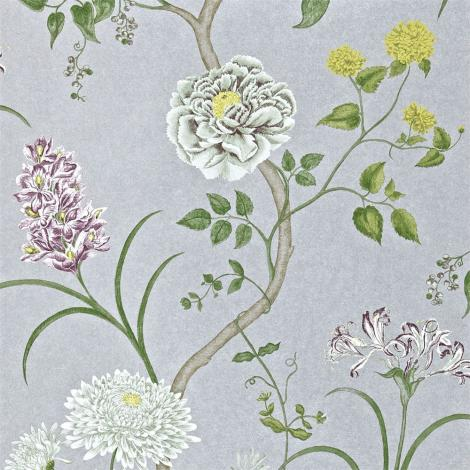 Обои бумажные SANDERSON Wallpapers from a Painters Garden